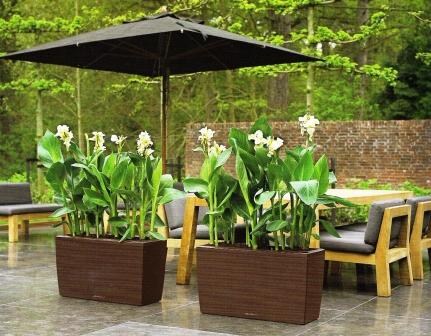 pullacherblumenwerkstatt gr ner balkon. Black Bedroom Furniture Sets. Home Design Ideas